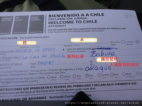 智利入境表.jpg
