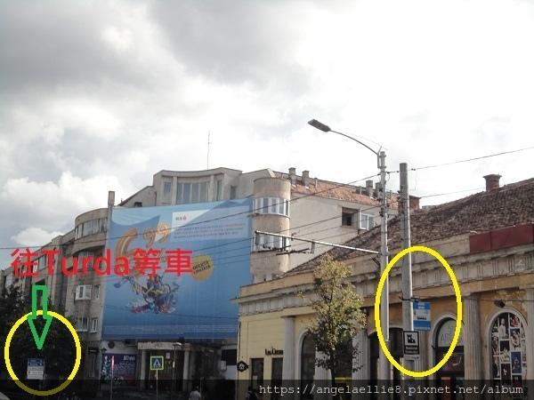 Cluj~ Turda
