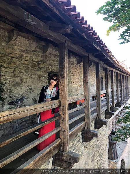 少女塔 Town Wall