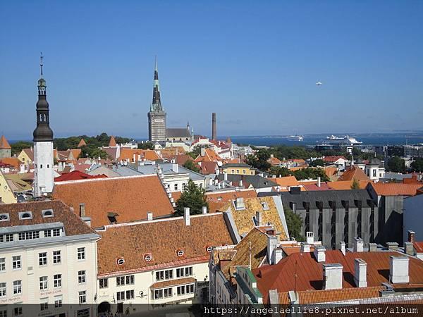 Tallinn Town Hall Tower