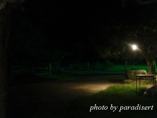 晚上的牧場