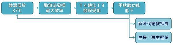 體溫低與甲狀腺功能低下之惡性循環.jpg
