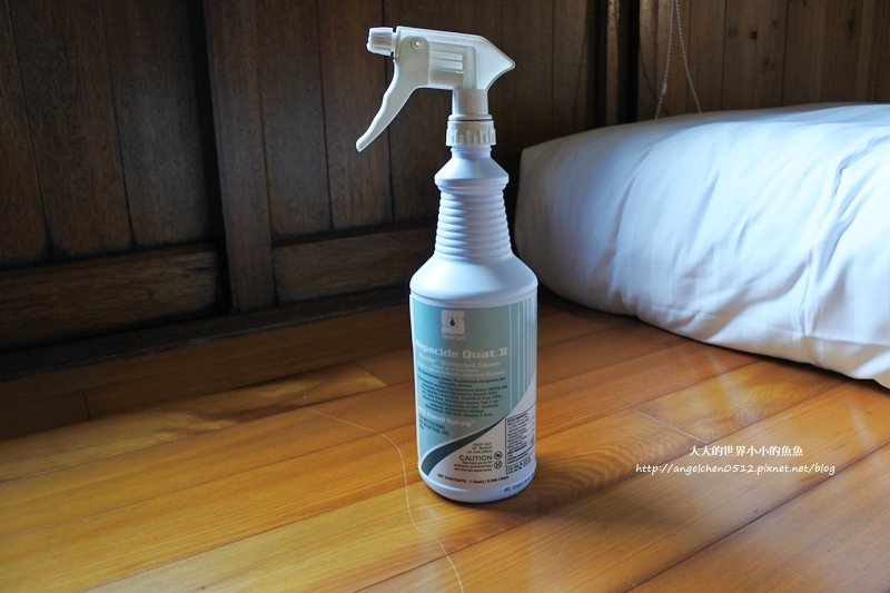 Quat II安心守護萬用消毒噴霧9