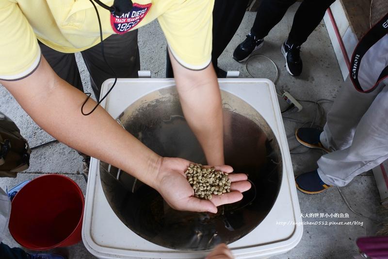 雲林景點 古坑景點 谷泉咖啡莊園的王建民  台灣咖啡的歷史  古坑咖啡深度導覽6