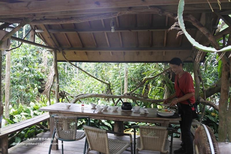 雲林景點 古坑景點 古坑美食 竽芯園庭園咖啡4
