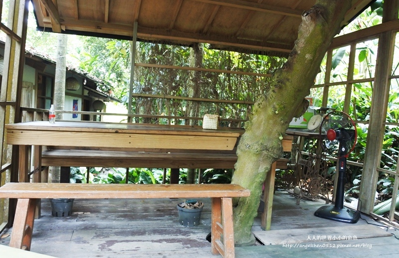 雲林景點 古坑景點 古坑美食 竽芯園庭園咖啡3