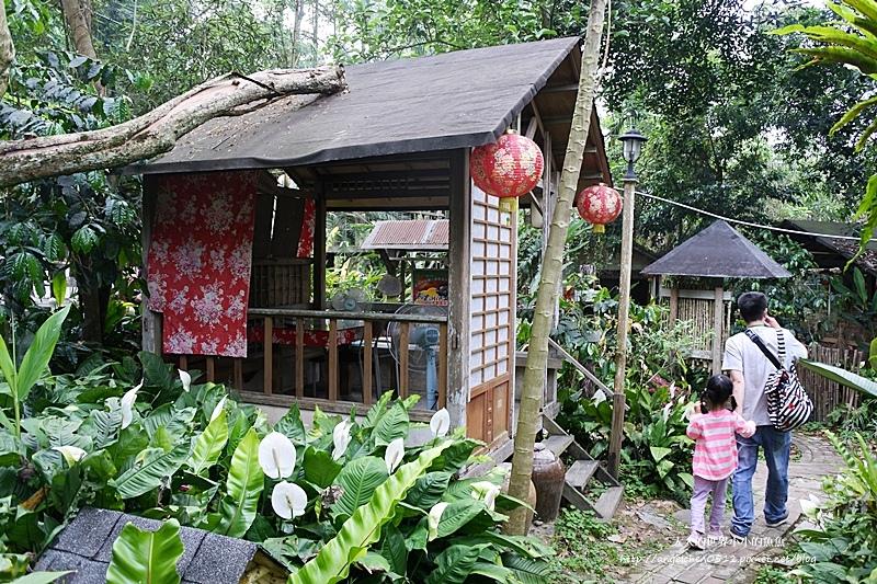 雲林景點 古坑景點 古坑美食 竽芯園庭園咖啡7
