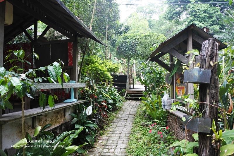 雲林景點 古坑景點 古坑美食 竽芯園庭園咖啡8