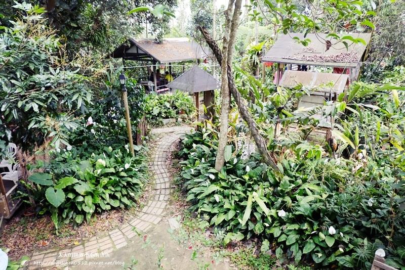 雲林景點 古坑景點 古坑祕境 竽芯園庭園咖啡  荷苞山竽芯園美食屋2