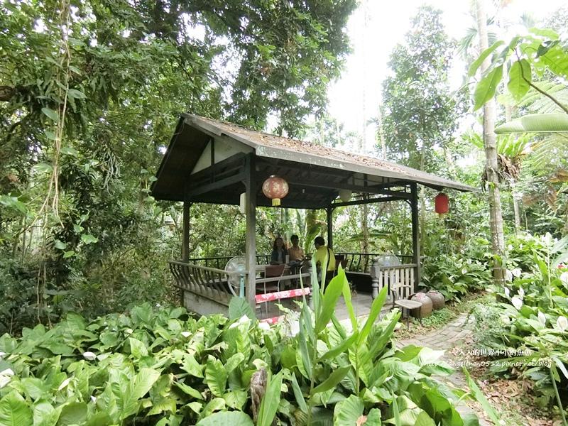 雲林景點 古坑景點 古坑祕境 竽芯園庭園咖啡  荷苞山竽芯園美食屋5