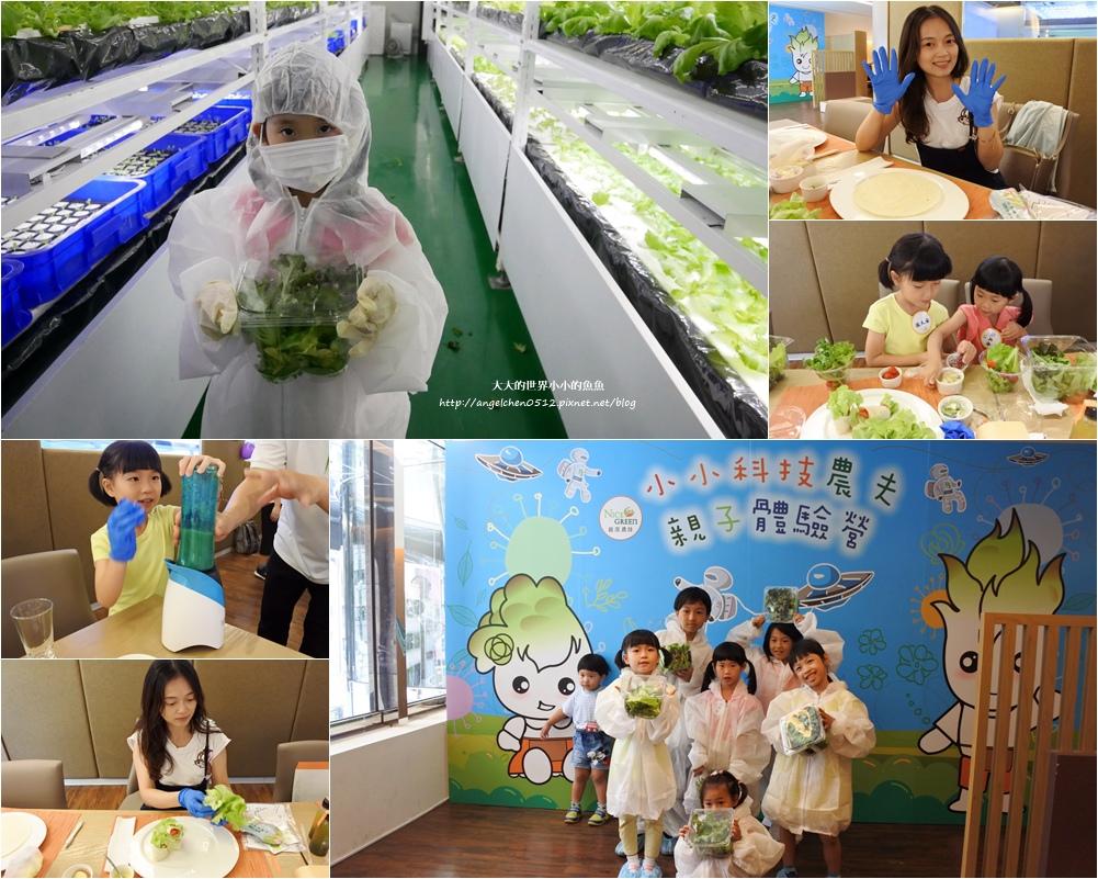 NICE GREEn 美蔬菜廚房 小小科技農夫 親子體驗營2