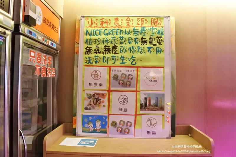 NICE GREEn 美蔬菜廚房 小小科技農夫  親子體驗營3