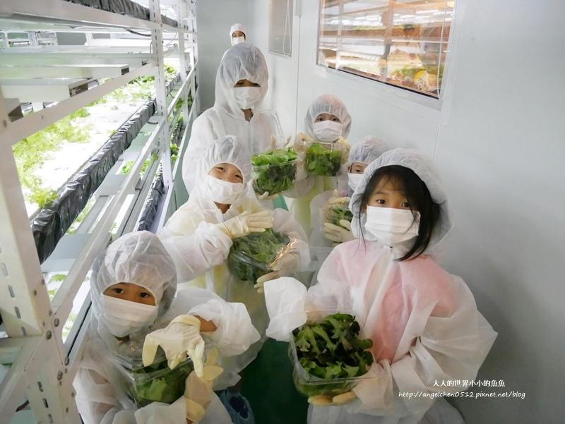 NICE GREEn 美蔬菜廚房 小小科技農夫  親子體驗營11