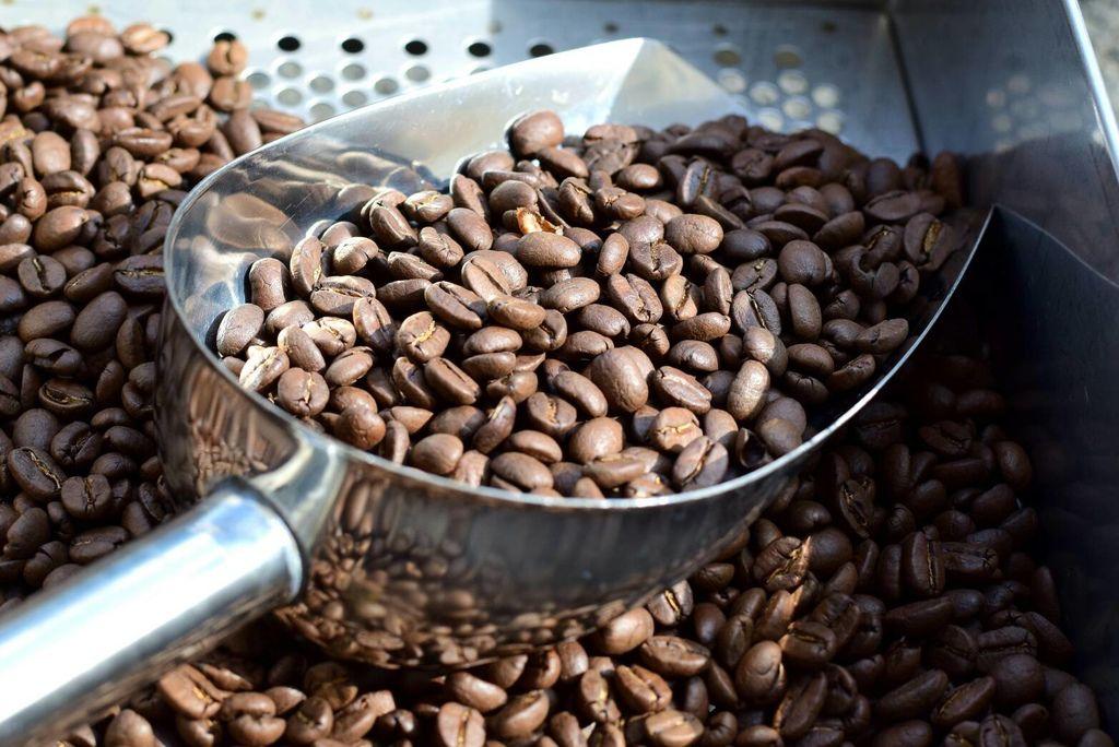 咖啡烘焙機  台灣最紅家用烘焙機 進豆出豆10分鐘輕鬆烘好豆 Rotate Fun 300 plus 小型咖啡烘豆機3