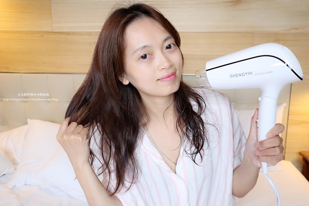 Sheng Yih 沙龍級雙負離子護髮大風量吹風機