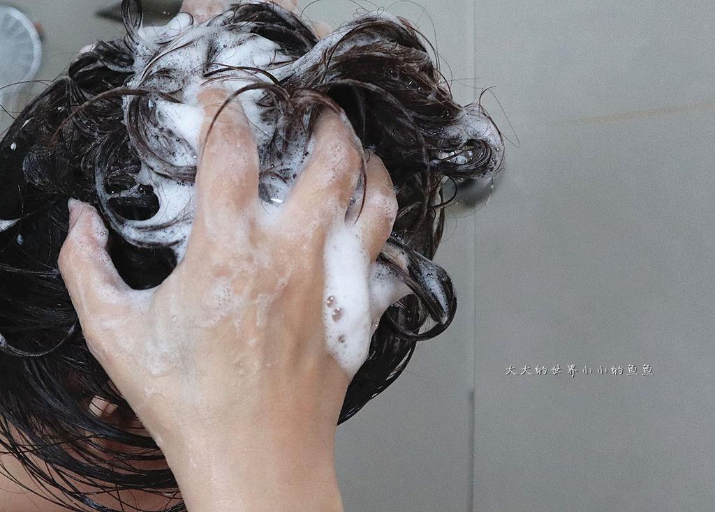 Lux植萃香氛洗髮系列2