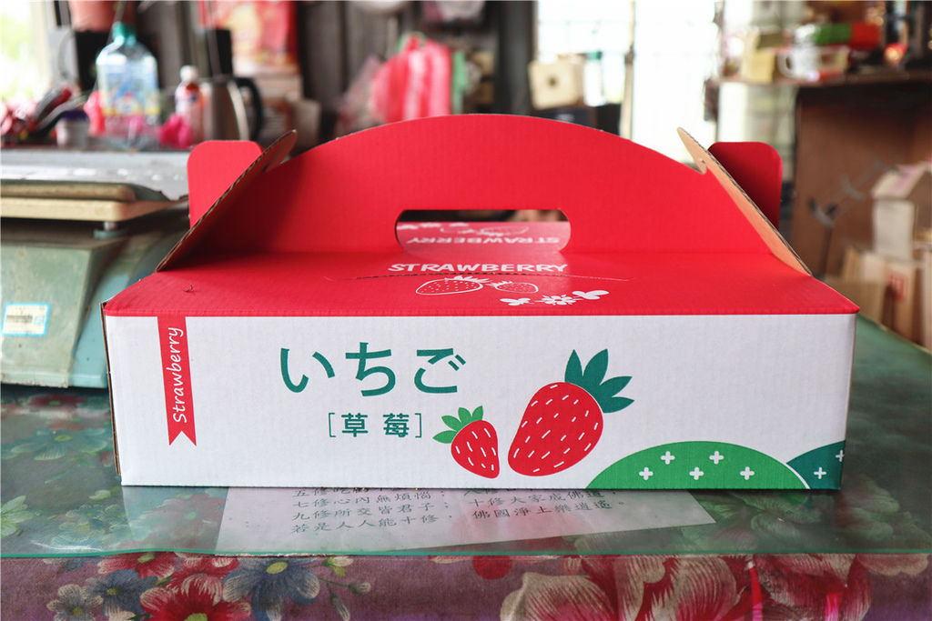 苗栗莓樂地草莓園苗栗 大湖草莓107.jpg