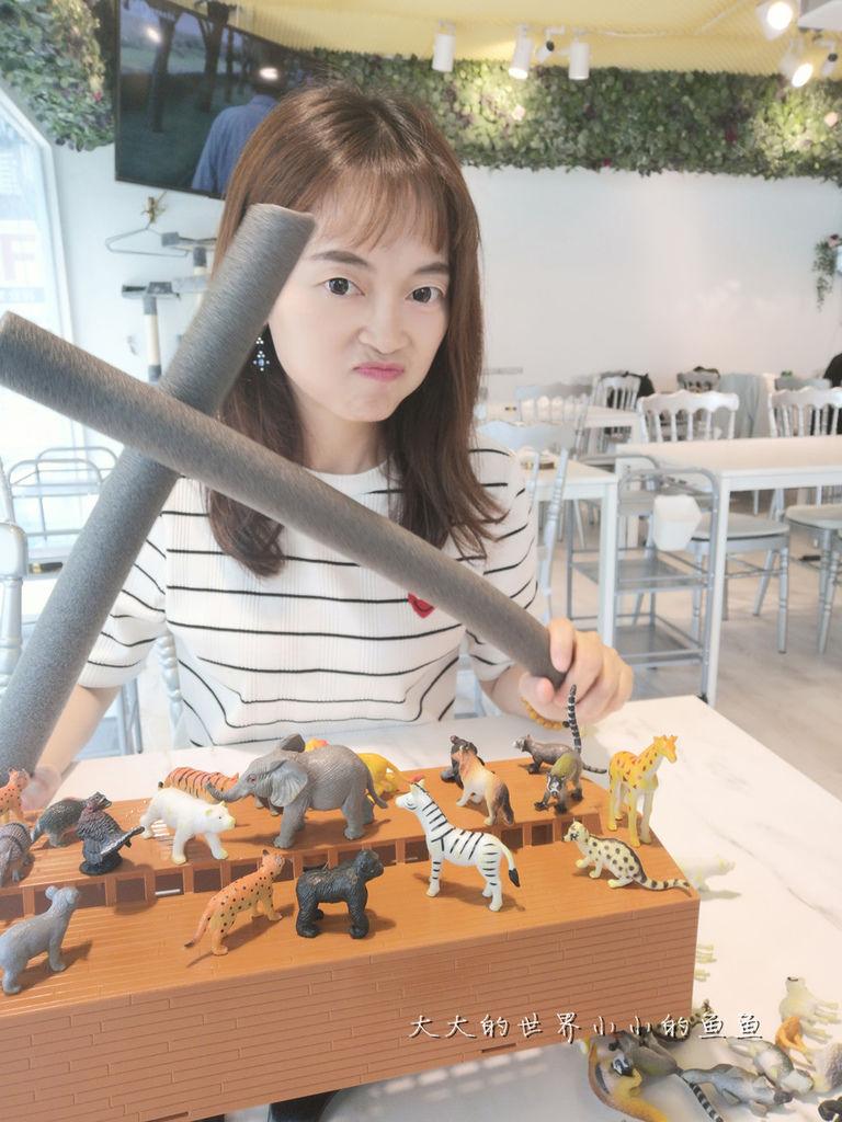 台北東區 貓咪貓咪 6s桌遊旗艦店9