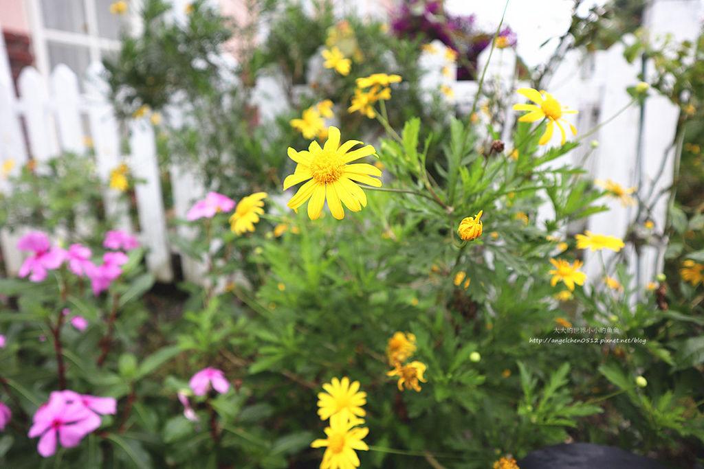 貝兒花園3