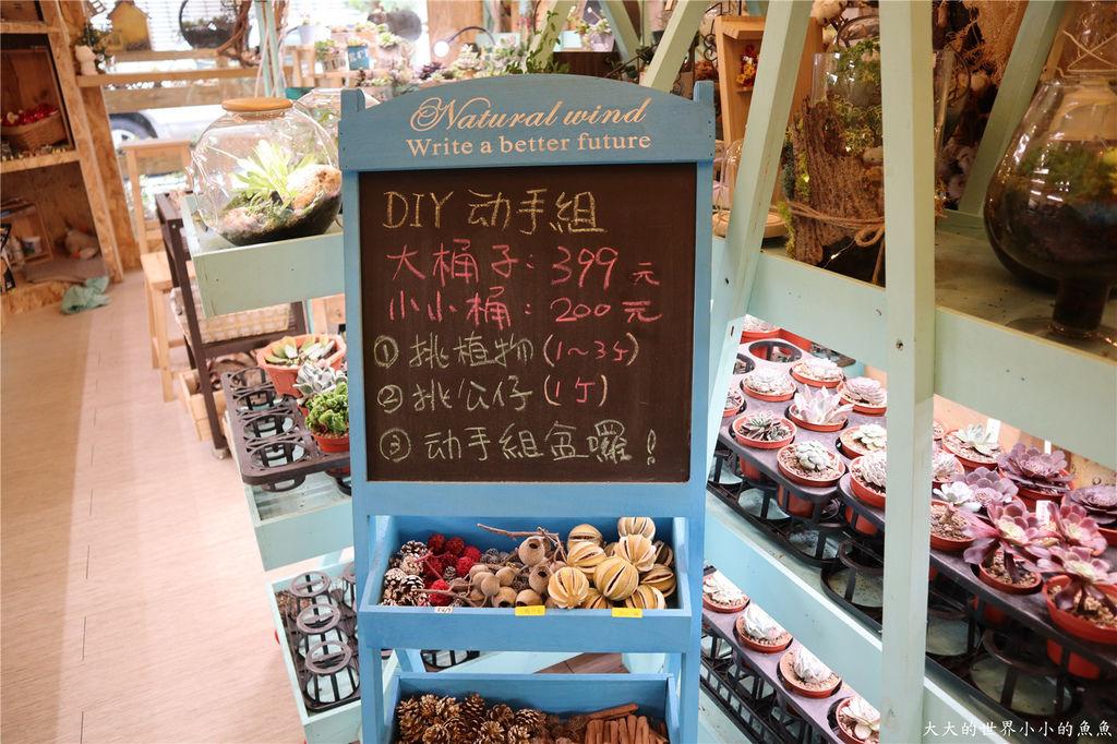 綠光花園 多肉植物 台北大安07.jpg