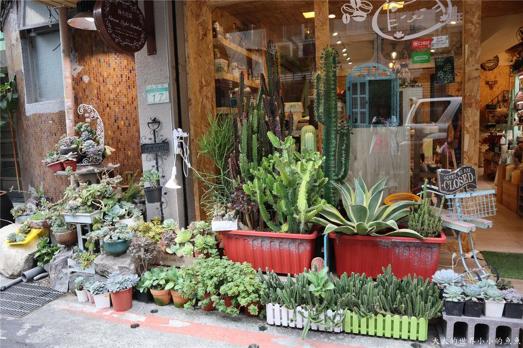 綠光花園 多肉植物 台北大安207.jpg