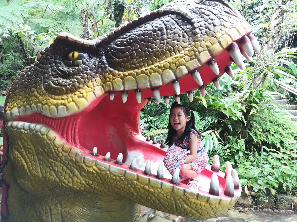 恐龍公園5