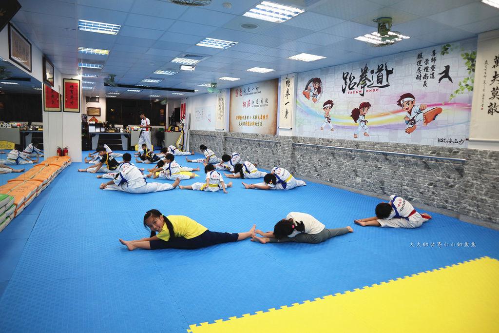 HSL 海山力跆拳道8