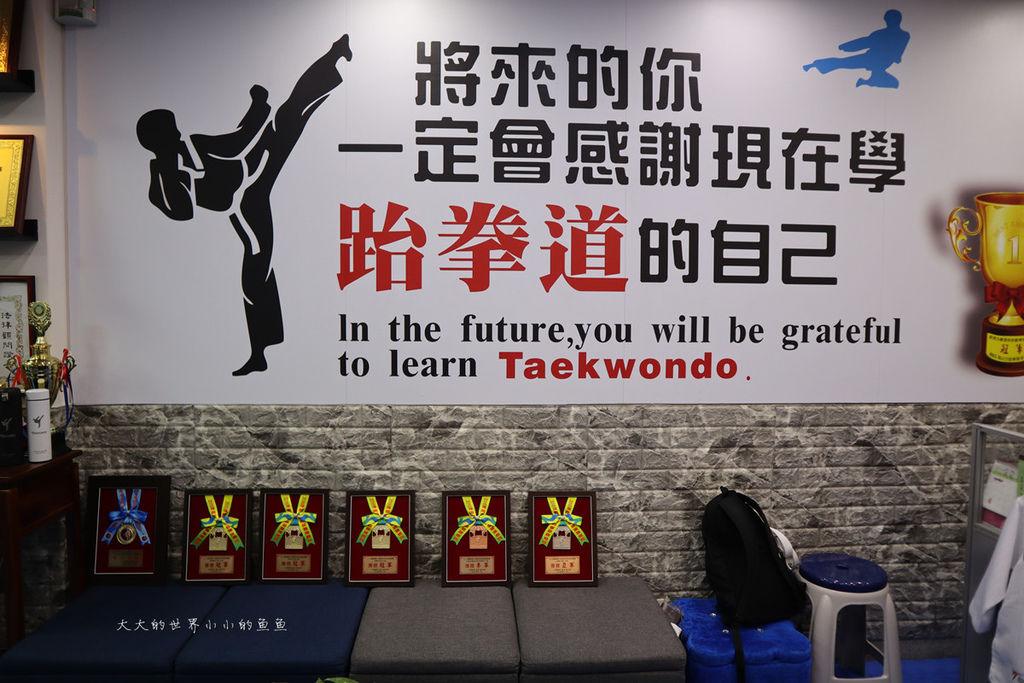 HSL 海山力跆拳道6