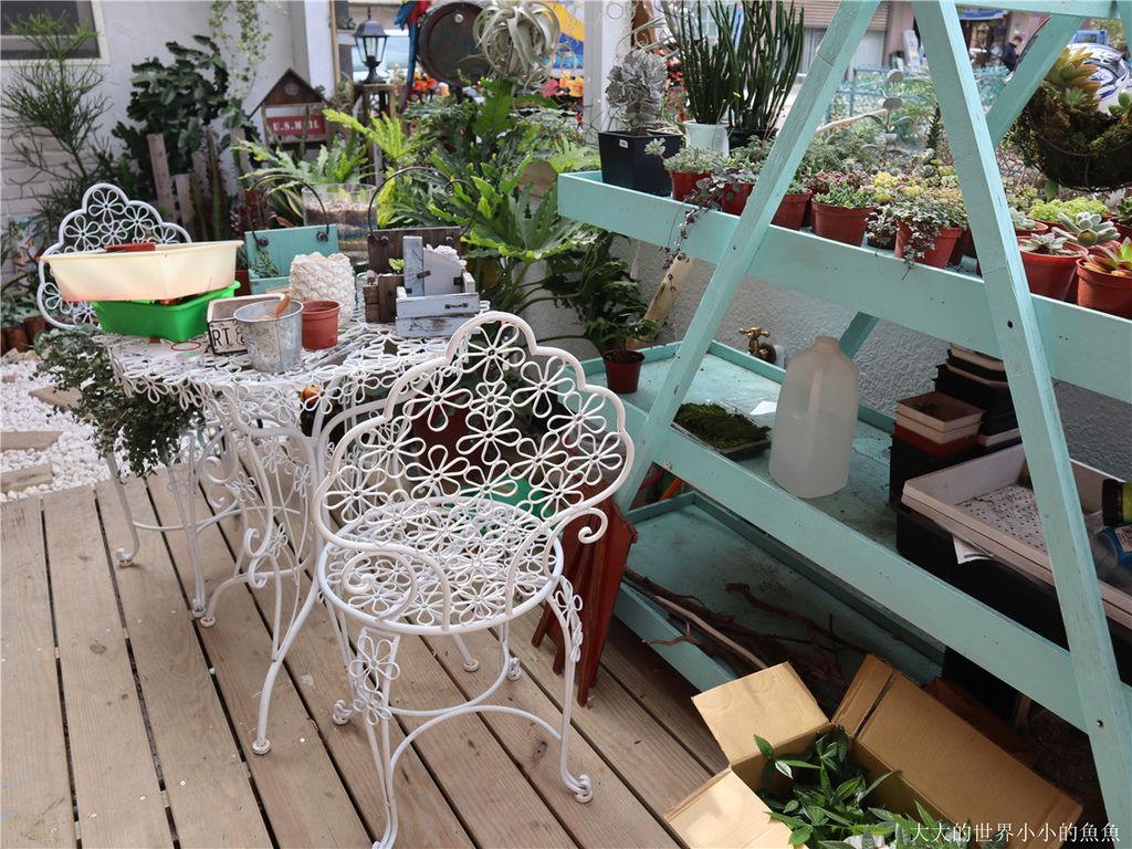 綠光花園 最療癒的植栽店09