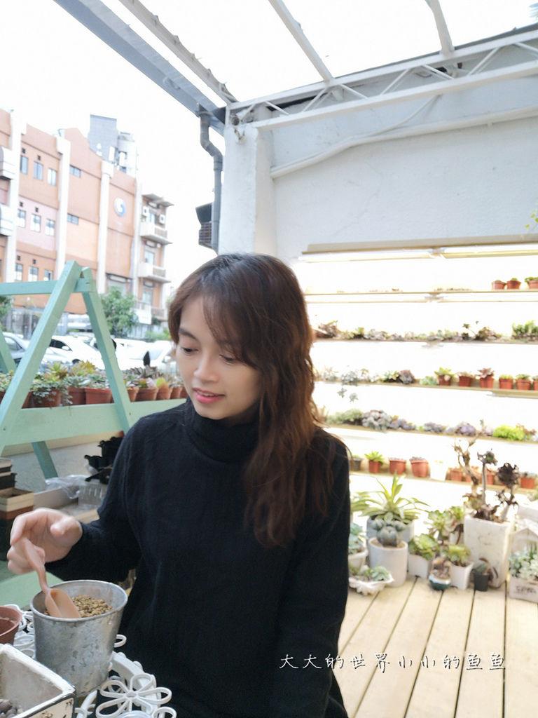 綠光花園 最療癒的植栽店