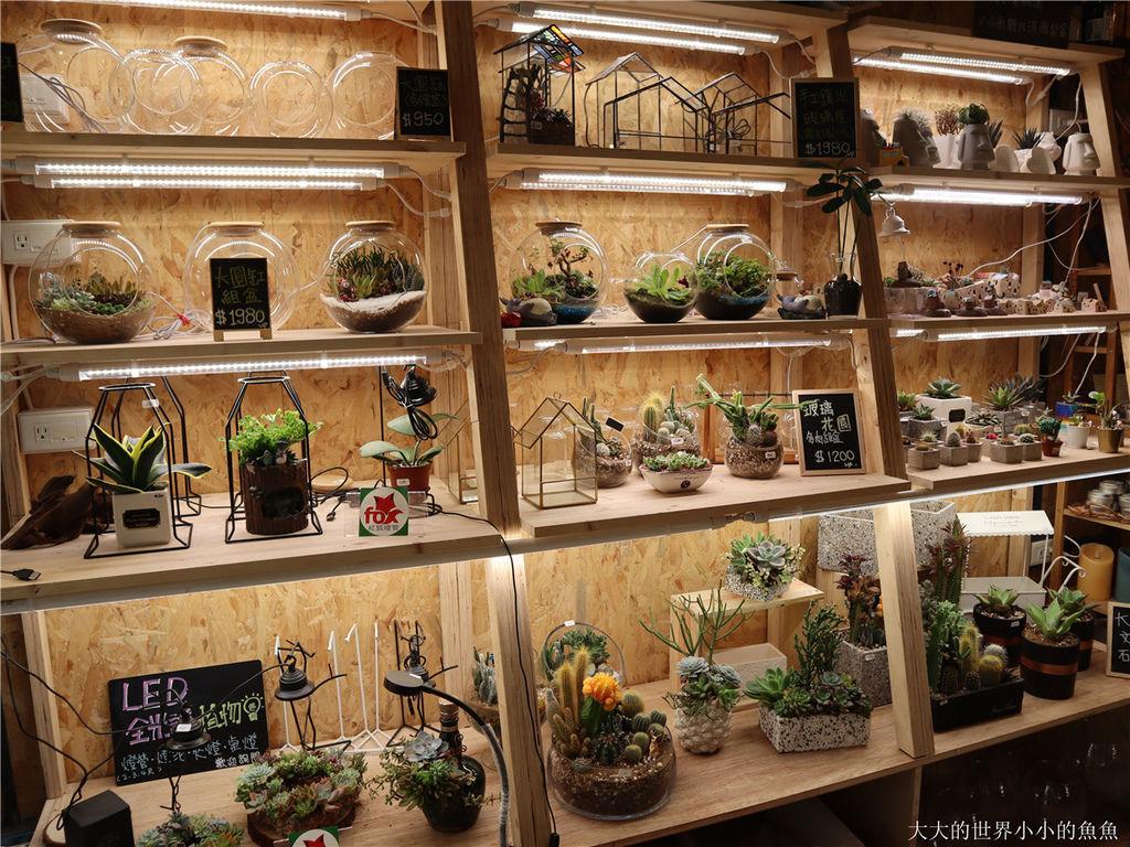 綠光花園 最療癒的植栽店30