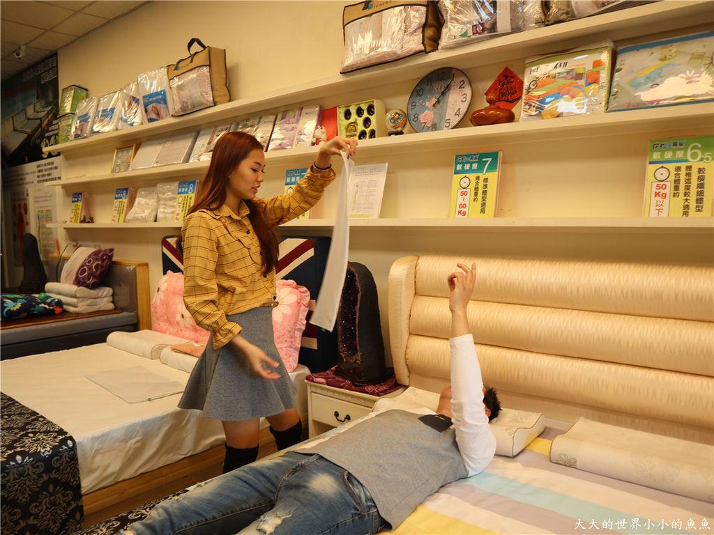 新竹創始店 床枕e專家  釋配床 、E美枕11