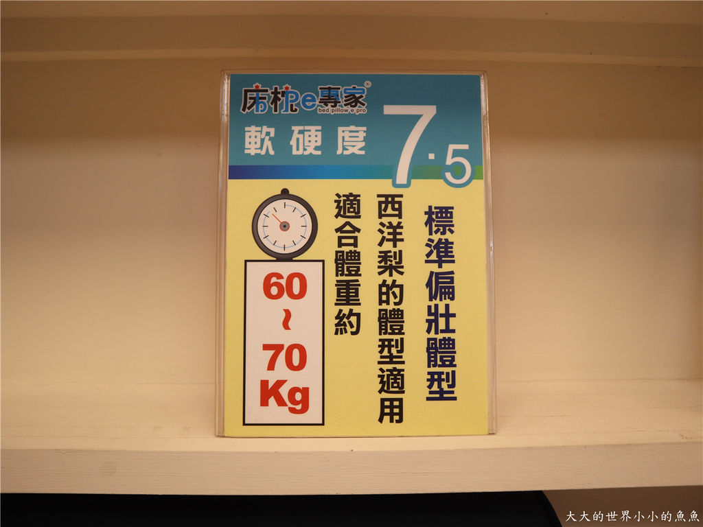 新竹創始店 床枕e專家  釋配床 、E美枕26