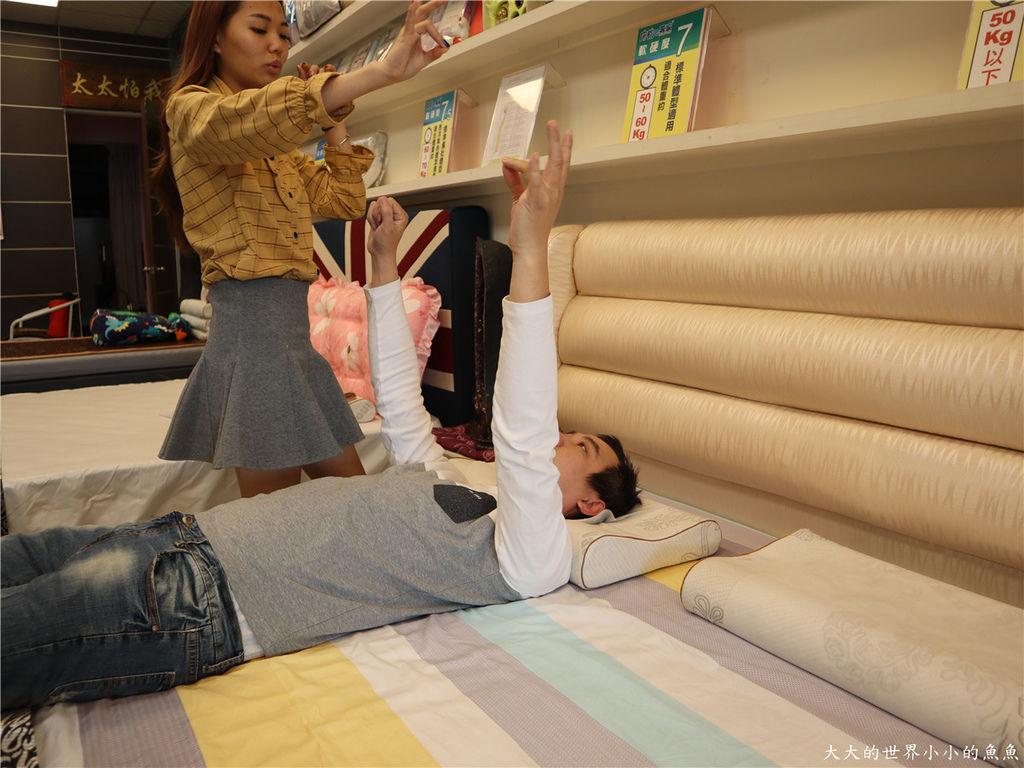 新竹創始店 床枕e專家  釋配床 、E美枕05