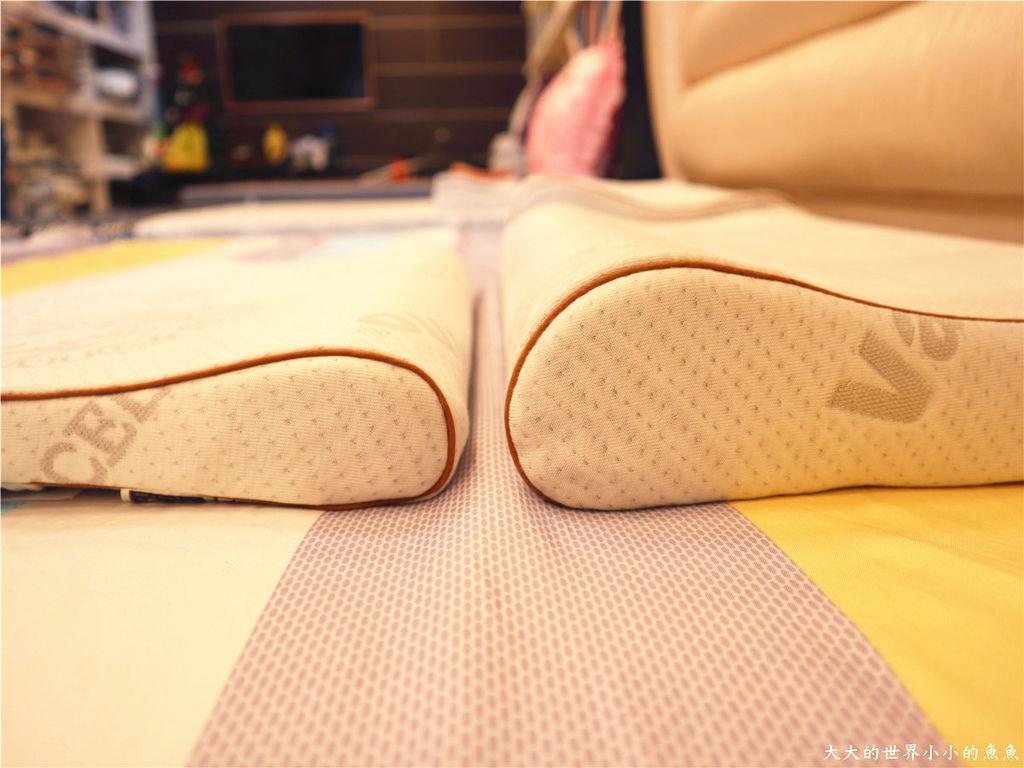 新竹創始店 床枕e專家  釋配床 、E美枕77