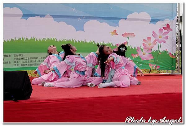 20110702 北海岸花海季.淡水山區慢活節(向日葵花海、南瓜)_004.jpg