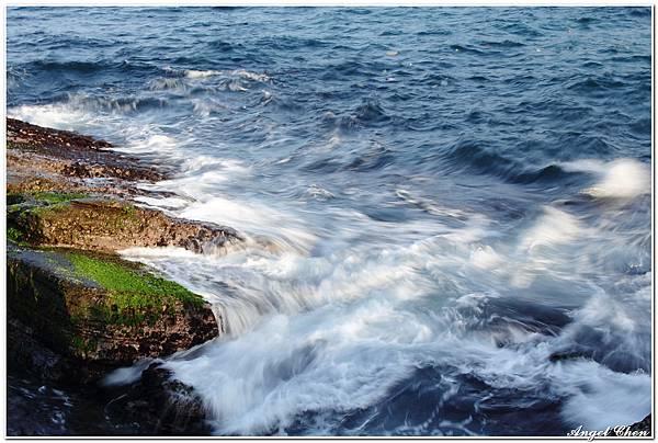 20110226 潮境公園_032.jpg