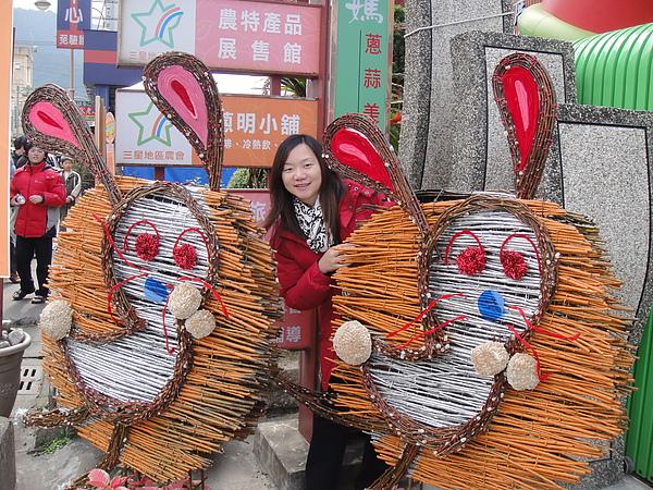 20110101 三星銀柳節.青蔥文化館_29.JPG