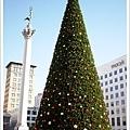 高人一等的聖誕樹.jpg