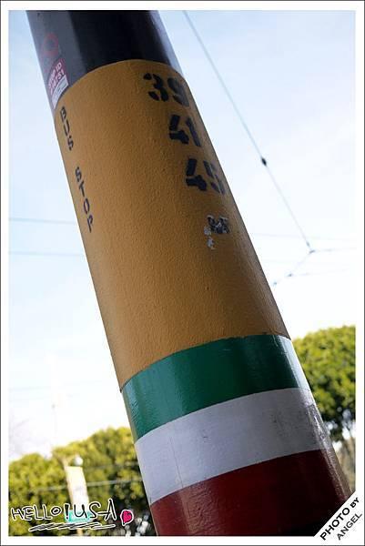小義大利區的電線桿就是巴士站牌.jpg