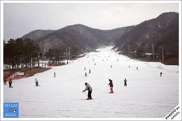 看到滿山遍野的雪好興奮