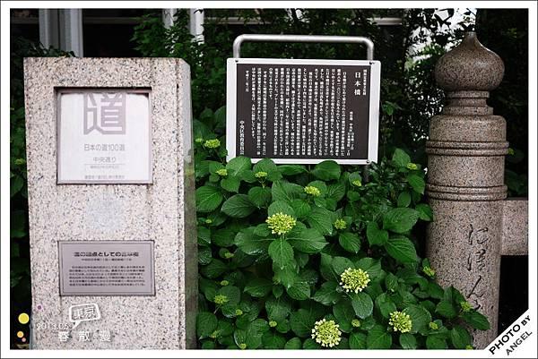 繼橫濱之後我又走了一條百大道路
