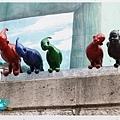 同伴一直覺得這群鳥人看起來很不舒服XDD.jpg
