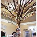 案內所裡面的大樹.jpg