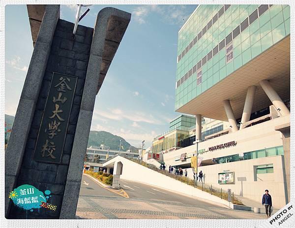 釜山大學.jpg