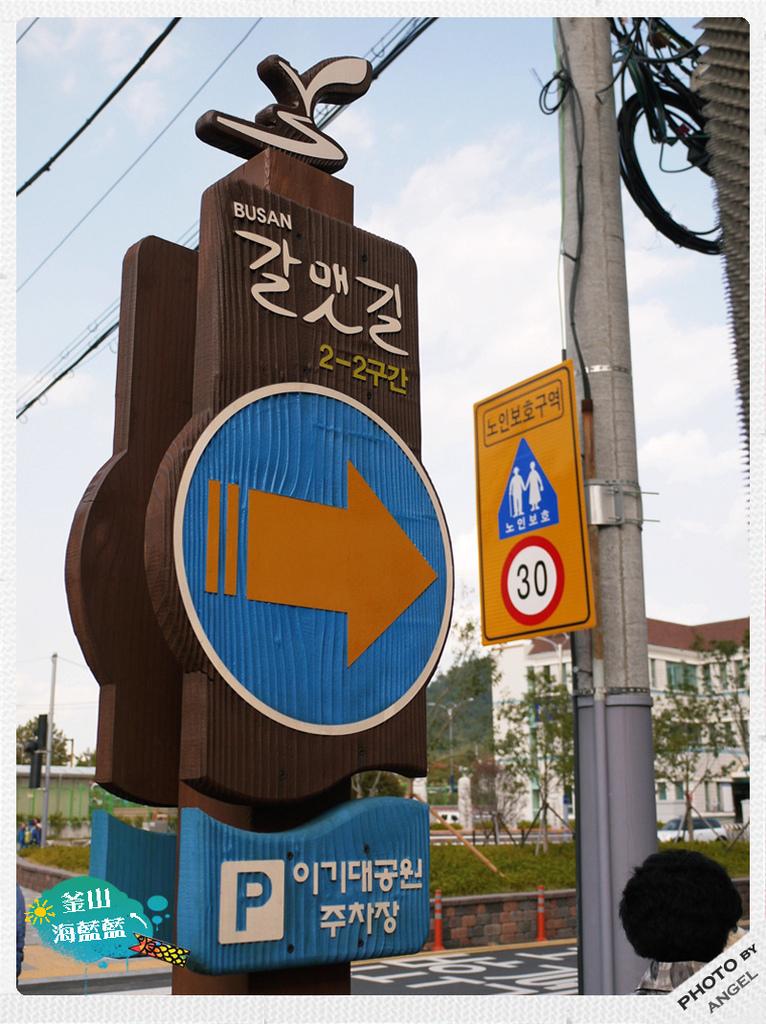 全釜山有21條海鷗路讓你挑戰.jpg