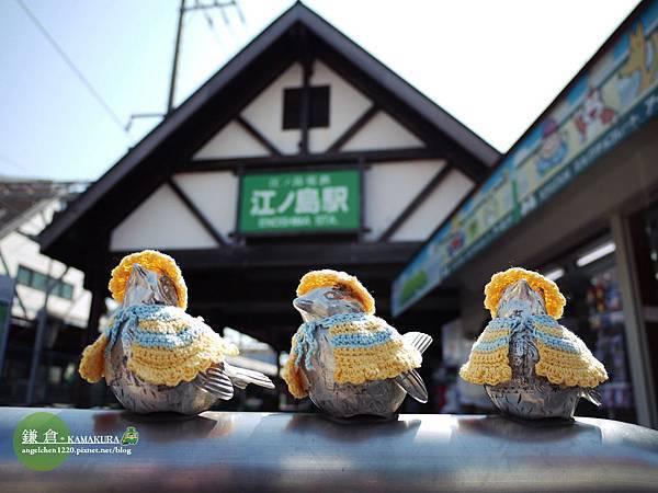 這三隻小鳥在不同季節都有不同打扮.jpg