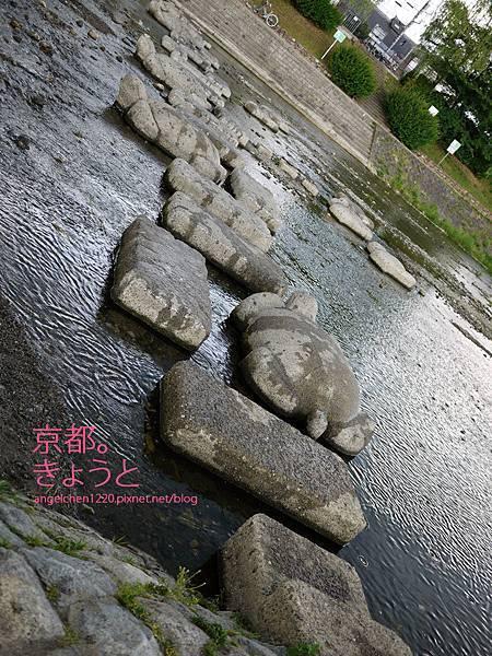 鴨川三角洲的烏龜跳石.jpg