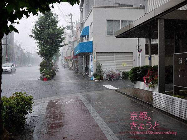 突如其來的一場大雨讓我們淋成落湯雞.jpg