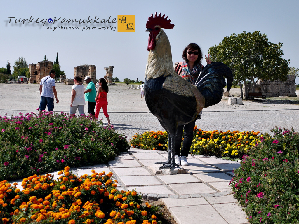 Denizli的代表動物就是公雞.jpg